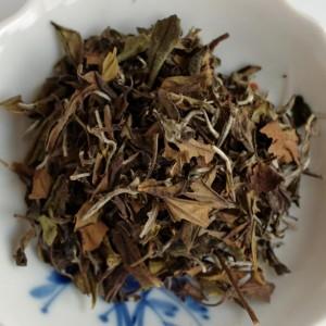 Fujian-Bai-cha-dry